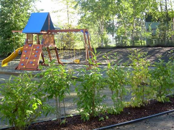 commercial-facility-new-playground-installation-and-landscape-after