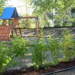 Alaska Commercial Landscaping Commercial Facility New Playground Installation and Landscape - After