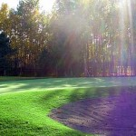 Lawn maintenance, mowing, hydroseeding and topsoil in Anchorage, Alaska