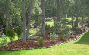 Arctic Landscaping LLC LANDSCAPE MAINTENANCE and LAWN CARE in ANCHORAGE, AK
