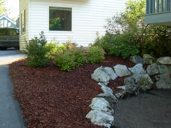 commercial-facility-mulch-groundcover-after