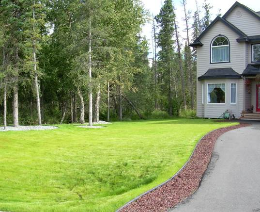 residential-new-construction-landscaping-lawn-installation-and-lava-rock-driveway-border-after-a