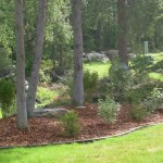 Alaska Residential Landscaping Residential Island and Shrub Plantings around Natural Vegetation